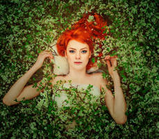 Flower cherry by Anna-Belash