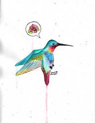 Humming Bird by SarahBeavis