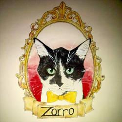 Zorro by SarahBeavis