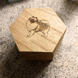 Keeshond box by Tuskainen