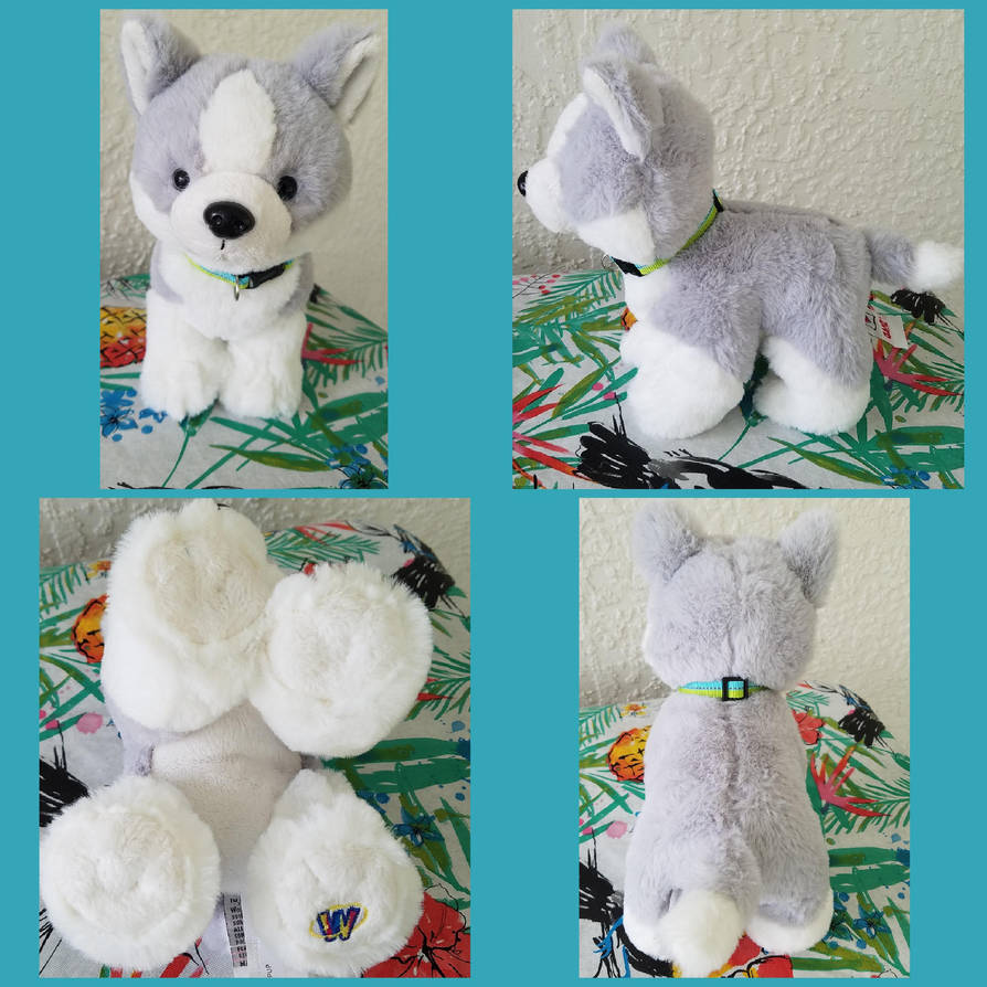 webkinz husky pup