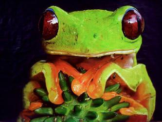 Green Frog by Jaguero92