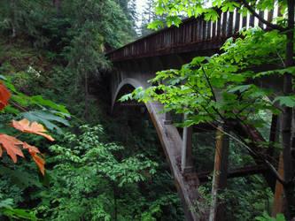 Shepperd's Dell Bridge by jldyr
