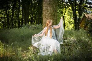 Elven Princess 03 by Fuchsfee-Stock