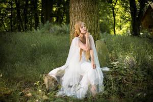 Elven Princess 04 by Fuchsfee-Stock