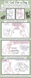 Cat for a day meme by Caffinated-Pinecone
