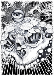 Shrooms by monkeydeathcult