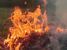 Flame's of Desire by XxPierceTheHeartXx