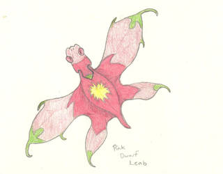 Pink Dwarf Leab by Allomals