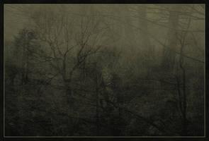 emerging stream-emerging mist by Daimonion-in-Sound