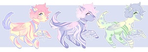 Winged Canine Adopts [ 1/3 OPEN ] by OstrichAdopts