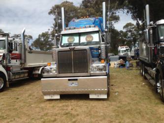 Australian western star  by ABB0002