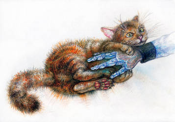 Sheyla The cat sketch by secondavolta