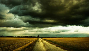 Cornfields and Clouds by oldmandiggidy