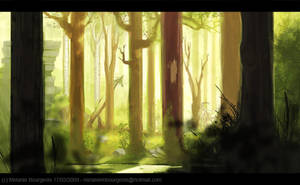 Day time in the woods by Freiheit