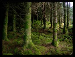 Fairytale by DundalkChild