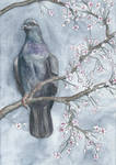 Enjoying Spring by DundalkChild