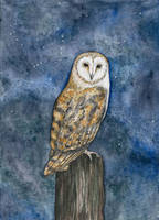 Nightwatch by DundalkChild