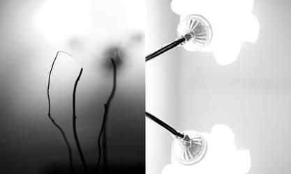 light.room.dark by yemz11