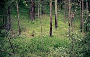 Green 1 by Javelines-rus