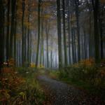 Retrouver la quietude passee by DpressedSoul