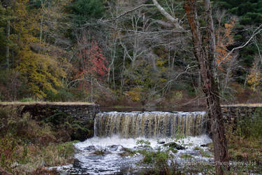 Perryville Dam Fall Foliage by Charlief43