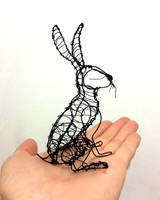 Hare in the hand by ZackMclaughlin