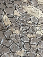Dry Ground Texture Stock by Suiish