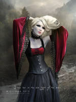 I saw her in the dim light of the moon by cylonka