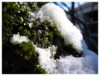 winter II by nachtangst