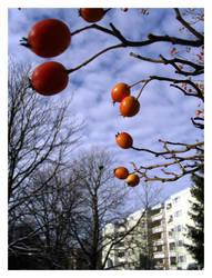 winter III by nachtangst
