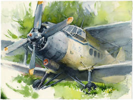 Old airplane (Antonov An-2) by OlgaSternik