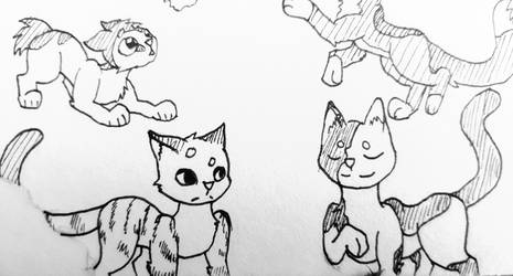 Inktober day 8 - Ospreypaw and Ploverpaw by Zichqec