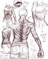 Hunter anatomy by ippylovesyou