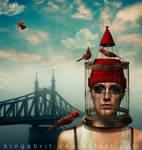 Tale of a City (Budapest) by KingaBritschgi