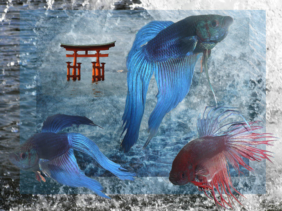 Nippon Epode by digimagicnb