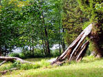 Lakeside Trail Rock Formation 01 by TemariAtaje