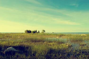 Lake Michigan 2014 by JamesRuthless
