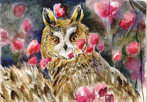 Owl Blossom by Redilion