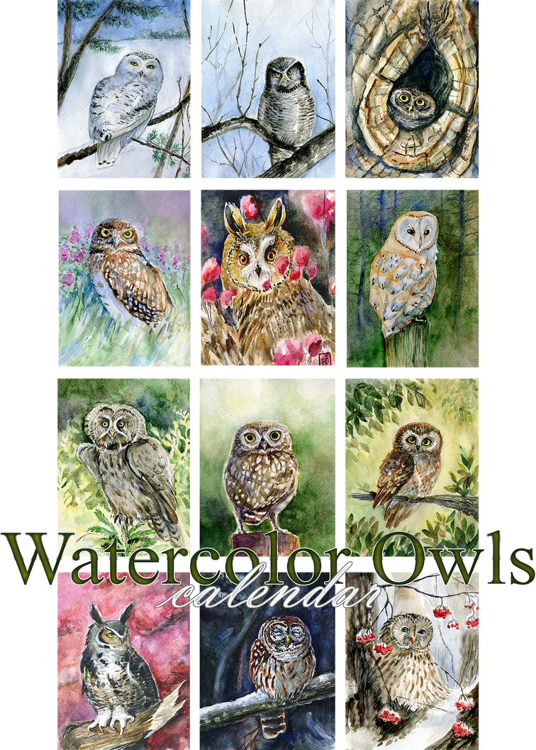 Watercolor owls calendar 2016 by Redilion