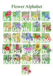 Alphabet Poster Flowers by Redilion