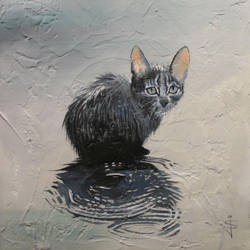 Cat in the Rain by NorthumbrianArtist