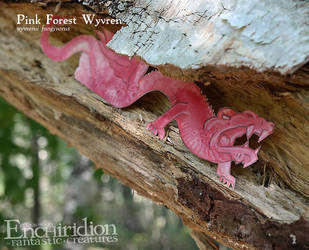 Pink Forest Wyvern (wyvrenii fungivorus) by Ettinborough
