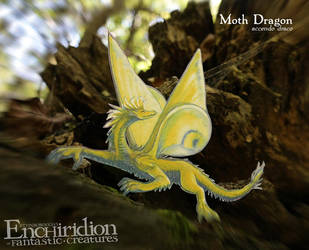 Moth Dragon (accendo draco) by Ettinborough
