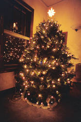 Widely angled Christmas tree by estelendur