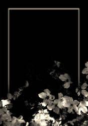 Lit. Template - Blossoms IV by rockgem