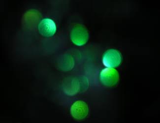 Stock texture - Green Bokeh by rockgem