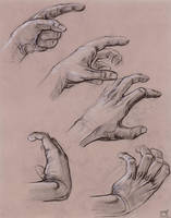 Hand Study by Liemn