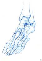 Foot by Liemn