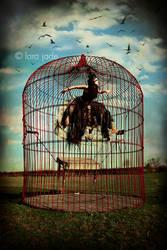 Breaking Free by larafairie